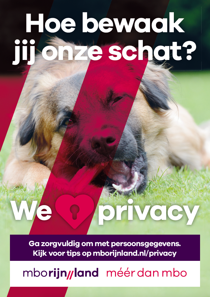 Interne-campagne-privacy-en-omgang-persoonsgegevens-poster-1